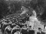 Действия дивизий Западного фронта