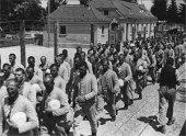 В лагере военнопленных